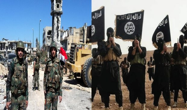 Rêjîma Sûriyê û DAIŞ'ê li dijî QSD'ê lihev kirine
