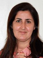 Necîbe Qeredaxî